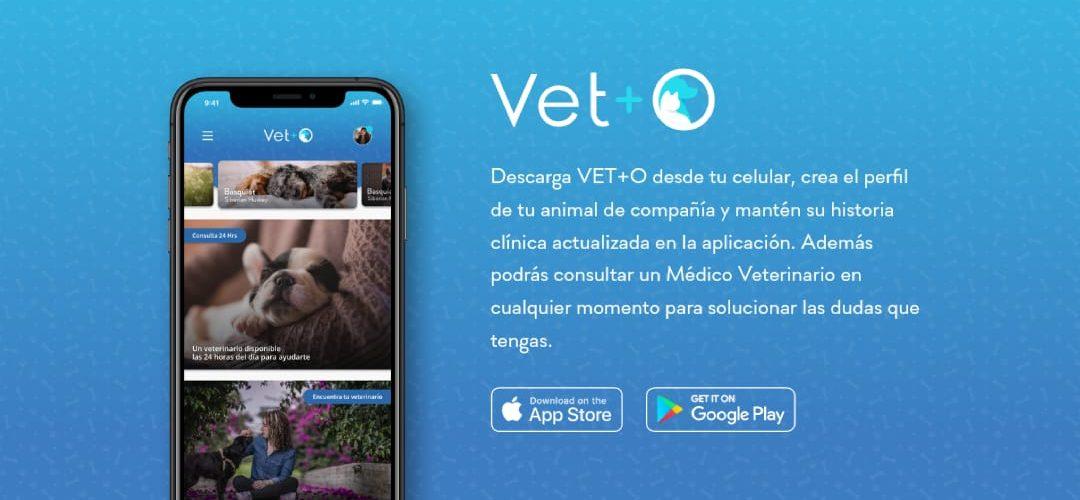 App: Vet+O